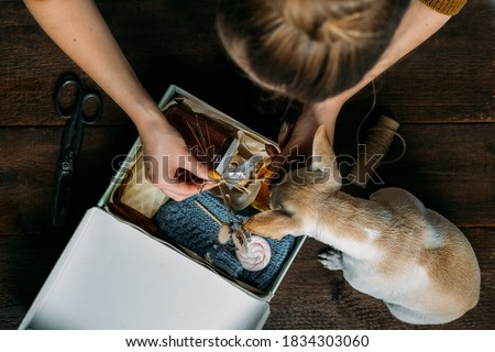 Care box, package ideas. Woman and her dog fold a care box with sweets and warm clothes. Care Package Delivery, Fall Winter holidays Food Care gift box. Selective focus on box