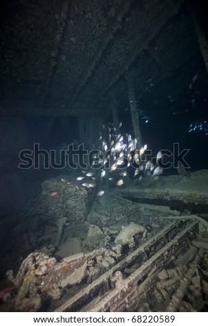 Cargo of the SS Thistlegorm.