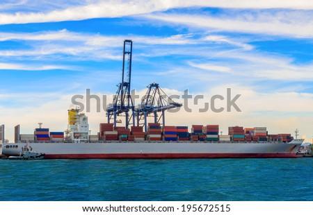 Cargo sea port and Sea cargo cranes