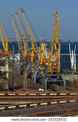Cargo sea port. Sea cargo cranes. Sea