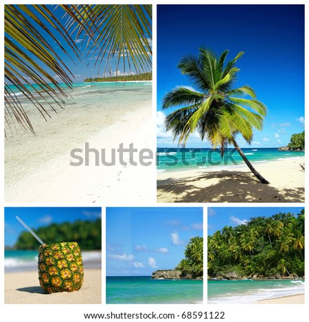 Caribbean beach collage. Beach with palm and and exotic cocktail
