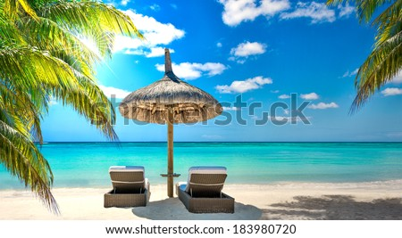 caribbean beach summer with tropical color palm tree, sun, turquoise sea and sand