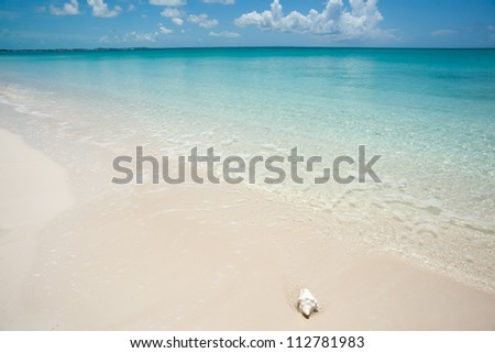 Caribbean beach with conch shell at waters edge.