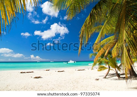 Caribbean beach with palms, paradise island
