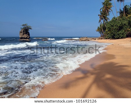 Caribbean beach with silhouette of palm tree on the sand and a rocky islet, Costa Rica, Manzanillo