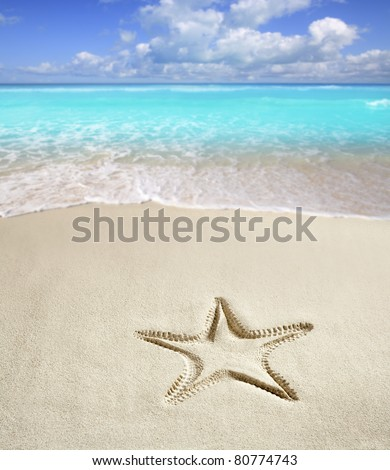 caribbean beach with starfish print on white sand such as a summer vacation symbol [Photo Illustration]