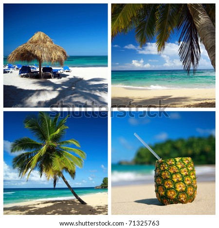 Caribbean collage with palm and tropical beach