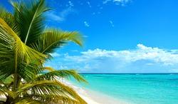 Caribbean island, tropical background