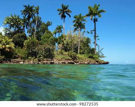 Caribbean island with beautiful tropical vegetation viewed from water surface