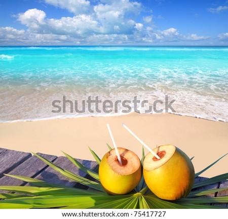 Caribbean paradise beach coconuts cocktail palm trees [Photo Illustration]