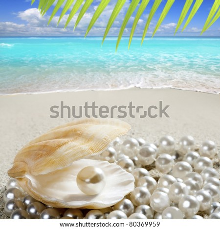 Over White Sand Beach in a