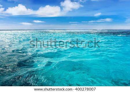 Caribbean sea bottom with blue water wave background. Close-up blue sea. Transparent sea water. Separated sea. Calm sea. Sunny day sea background. Endless sea. Daylight sea. Sea water. Turquoise sea.