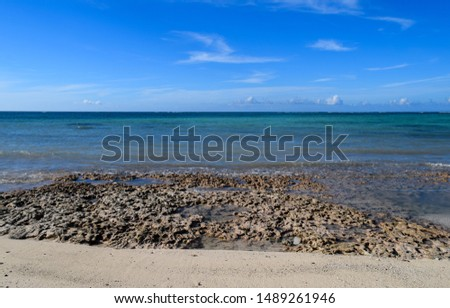 Caribbean sea coast. Central America #1489261946