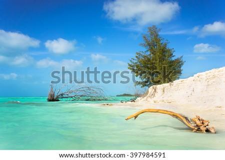 stock photo caribbean sea paradise cuba tropical paradise on caribbean sea island cuba sea paradise sunny 397984591 - Каталог — Фотообои «Море, пляж»