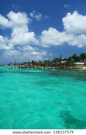 caribbean shore #138137579