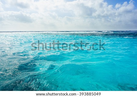 stock photo caribbean summer sea with blue water wave cuba outdoor tropical summer sea paradise heaven view 393885049 - Каталог — Фотообои «Море, пляж»