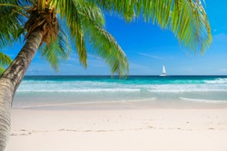 Caribbean sunny beach with palm and a sailing boat in the turquoise sea on Jamaica Caribbean island.