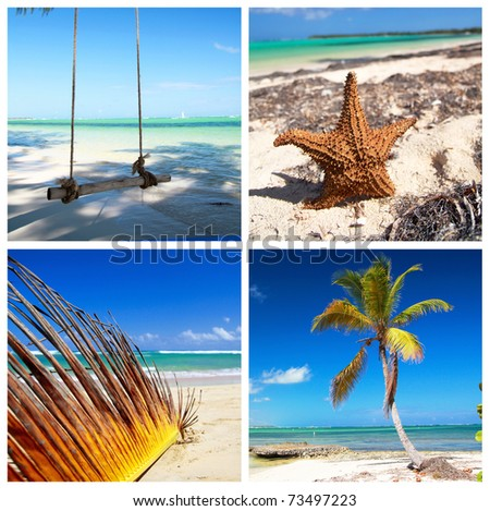 Caribbean travel collage with palm and coastline