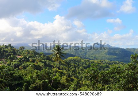 caribbean, tropical landscape in st. lucia