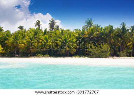 Caribbean wild beach with palm trees at blue lagoon, Saona Island, Dominican Republic