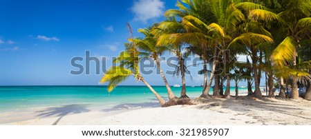 Caribbean wild beach with palm trees in Punta Cana, Dominican Republic