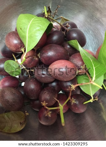 Carissa carandas is a berry-sized edible fruits  #1423309295