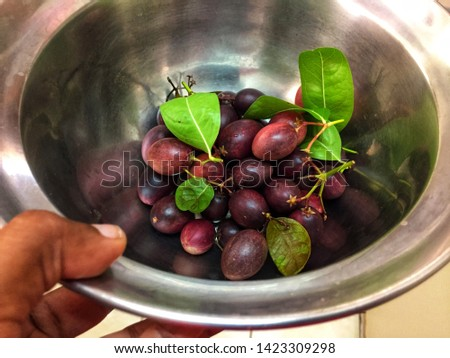 Carissa carandas is a berry-sized edible fruits  #1423309298