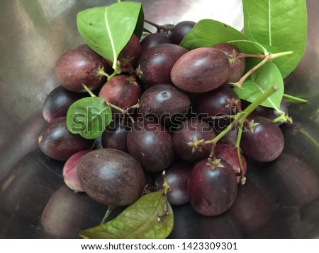 Carissa carandas is a berry-sized edible fruits  #1423309301