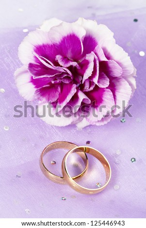 Carnation flower with two rings in a close-up image