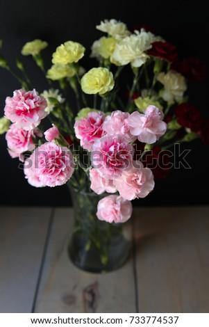 Carnations in Vase #733774537
