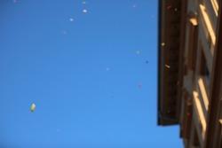 Carnival carnival confetti soap bubbles paper scraps