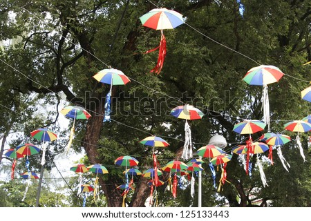 Carnival umbrellas on trees during the carnival of Recife in Brazil