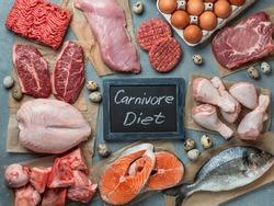 Carnivore diet, zero carb concept, top view