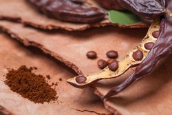 Carob. Organic carob pods with seeds and leaves on tree bark table. Healthy eating, food background.