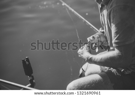 Carp, crucian carp, trout on fishhook, angling. Freshwater fish hooked on mouth in male hands, bait fishing. Bait, bait fishing, fish catching. Trophy, success, achievement. #1321690961