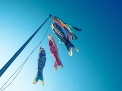 Carp Streamers in Japan. Koi Noboris (carp streamers) are decorated to pray for the growth of children and are a traditional Japanese event.