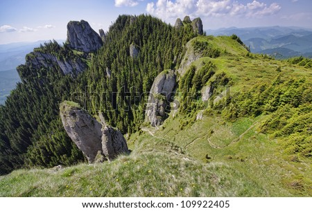 Carpathian mountain landscape in summer