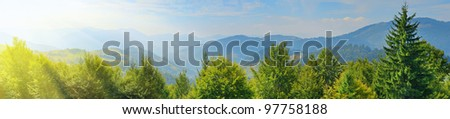 Carpathian mountain summer landscape with blue sky