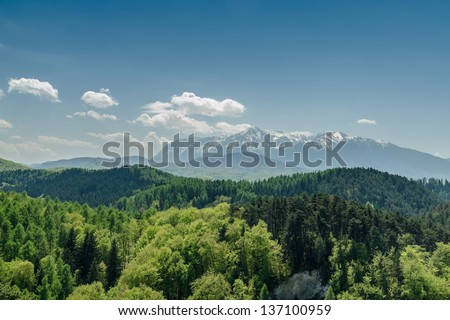 Carpathian Mountains Scenery #137100959