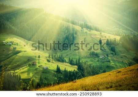 Carpathian mountains summer  landscape at sunset with green sunny  hills, amazing vintage retro hipster background