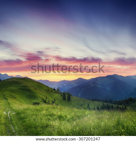 Carpathian mountains summer  sunset landscape with  dramatic sky and blue mountains #307201247