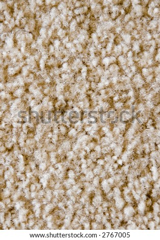 Carpet or rug texture