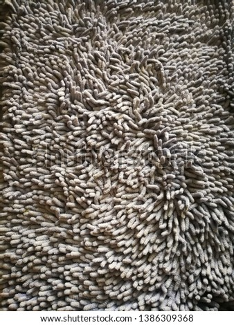 Carpet that has not been cleaned #1386309368