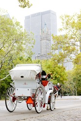 carriage in Central Park, New York City, USA
