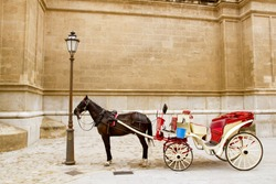 Carriage with horse in Majorca cathedral in Palma de Mallorca at Balearic islands