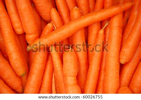 carrot - a close up of the fresh young