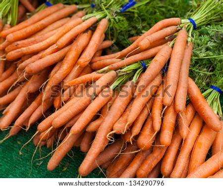 Carrot Bunches - stock photo