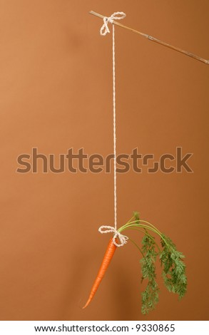 Carrot on a stick on chestnut colored background