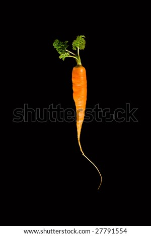 Carrot on black background
