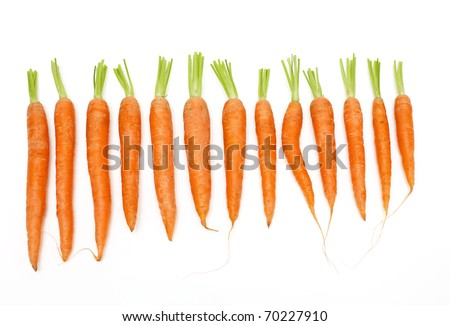 carrots arranged by size on white background